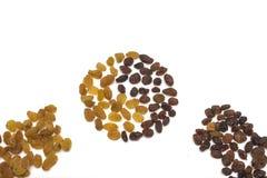 Separazione dell'uva passa su leggero e su scuro, su fondo isolato bianco immagine stock libera da diritti