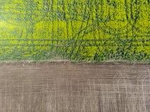 Separazione fra i campi della terra Striscia laterale fotografie stock libere da diritti