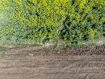 Separazione fra i campi della terra Striscia laterale immagine stock