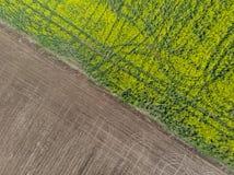 Separazione fra i campi della terra Striscia laterale fotografia stock libera da diritti