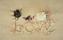 Separe el amor y la paz en todo el mundo especialmente el días de fiesta del día de San Valentín y del special Foto de archivo libre de regalías