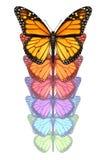 Separe sus alas stock de ilustración