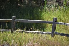 The old wooden fence. A seperation in the wide open land of the old wooden fence line royalty free stock photo