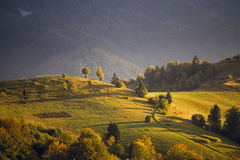 Sepetmber Light. Sepetmber evening in Carpathian mountains, ukaraine Royalty Free Stock Photography