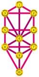 Sephirot和生物演化谱系图解黄色洋红色 免版税库存照片