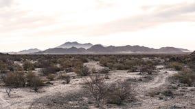Sepiaökenlandskap med berg i bakgrunden royaltyfri bild