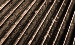 Sepia тонизировал абстрактные лист ладони с падениями воды на ем Стоковое Фото
