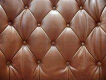 Sepia av stoppning för äktt läder Fotografering för Bildbyråer