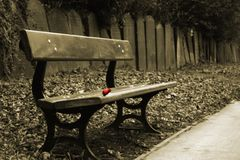Sepia bench. Sepia shot of bench with a single red rose and a row of gravestones behind Royalty Free Stock Photos
