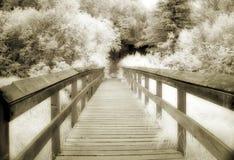 Sepia-Brücke Stockfotografie