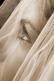 Sepia bride. Sepia closeup of a bride, focus on eyes stock images