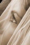 Sepia bruid Stock Afbeeldingen