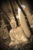 Sepia buddha and yoga Royalty Free Stock Photography
