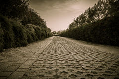 Sepia-colored walkway in the park Stock Photography