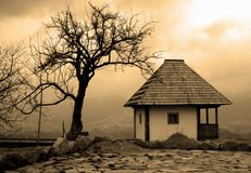 Free Sepia Cottage And Tree Stock Image - 8535031