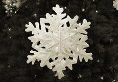 Sepia del copo de nieve Imágenes de archivo libres de regalías