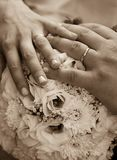 Sepia dos anéis de casamento Fotos de Stock Royalty Free