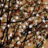 Sepia floral tree print Stock Photo
