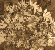 Sepia Geweven Daisy Wallpaper Royalty-vrije Stock Fotografie