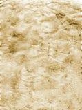 Sepia grunge Hintergrund Stockbilder