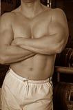 Sepia gymnastiekkerel Stock Foto's