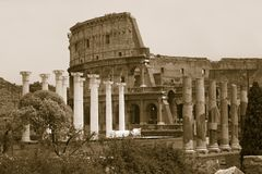 Sepia image of columns of the Forum and Colosseum or Roman Coliseum at dusk with streaked car lights, originally the Flavian Amphi Stock Images