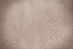 Sepia leather Stock Images