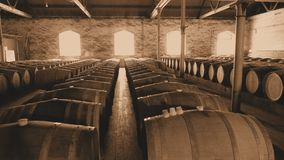 Sepia photo of vintage wine barrels in Rows Stock Images
