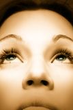 Sepia picture of beautiful girl with green eyes. Picture of a beautiful girl with green eyes Royalty Free Stock Images