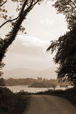Sepia ross castle at the end of a killarney forest path Stock Image