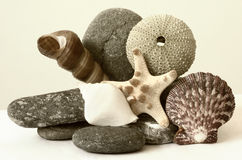 Sepia Seashore Scene Royalty Free Stock Image