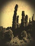 Sepia snapshot of the desert Stock Image