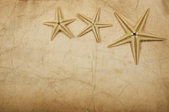 Sepia Starfish Paper Stock Images