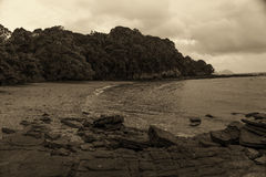 Sepia style sea and beach Royalty Free Stock Images