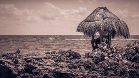Sepia tone caribbean coast Royalty Free Stock Image