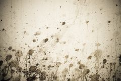 Sepia toned grunge spotted wall Royalty Free Stock Photo