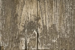 Sepia toned old wood background texture. Template for decoration and design Royalty Free Stock Photos