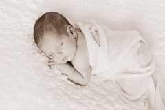 Sepia tonte neugeborenes Baby-Porträt Lizenzfreie Stockfotografie