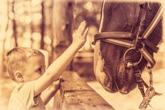 Cute little boy and a horse in sepia Stock Images