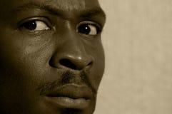 Sepia wantrouwen mannelijk portret Stock Afbeeldingen