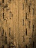 Sepia Wood Background Stock Image