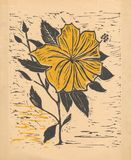 Flower - Original Woodcut Yellow Stock Photography