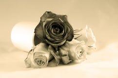 Sepiablumenstrauß von Rosenblumen Stockbilder