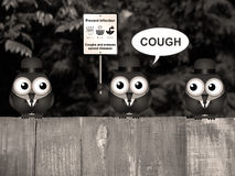 Sepiowy grypy i zimna zapobieganie Obrazy Royalty Free