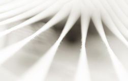 Sepiowy minimalny abstrakcj arkan tło Obrazy Stock