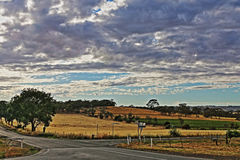 Seppeltsfield路的交叉点在巴罗莎山谷葡萄园里在南澳大利亚 免版税库存图片