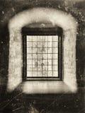Seppia della finestra di nobiltà Fotografia Stock Libera da Diritti