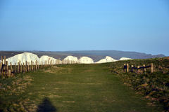 Sept falaises de craie de soeurs, le Sussex est, Angleterre Image libre de droits