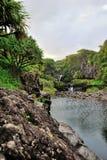 Sept regroupements sacrés de l'Ohio, Maui, Hawaï Photo libre de droits