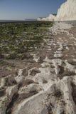 Sept soeurs, East Sussex, Angleterre - la plage blanche et les skeis bleus image libre de droits